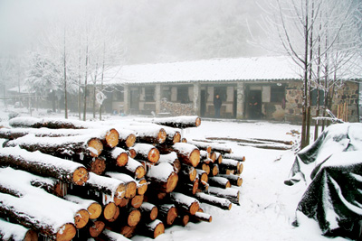 2008的第一场雪_2008年的第一场雪,我们在攫取一路的风景
