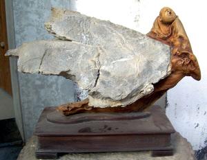 嵊州根雕的特殊形式 根抱石