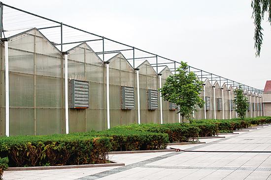 钢结构蔬菜大棚价格_【郑州塑料养殖大棚骨架机多功能无立柱蔬菜