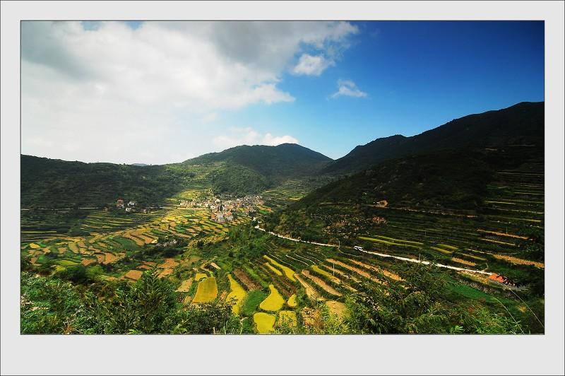 嵊州美景之一:色彩斑澜的梯田