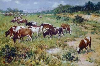 作品《牛群》