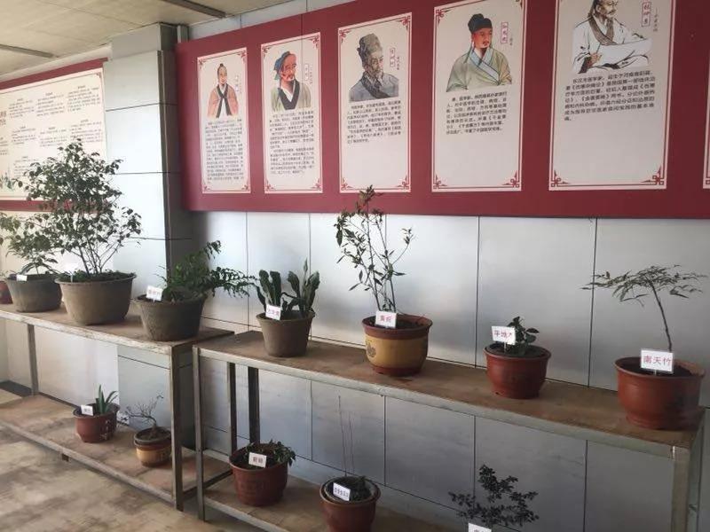 市中医院被认定为首批绍兴市中医药养生示范基地